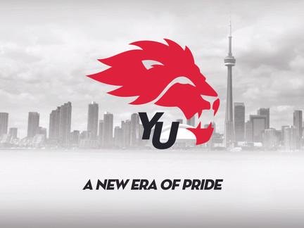 York Lions Rebrand