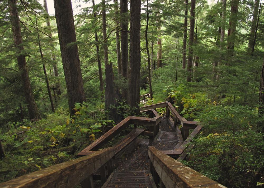 El Capitan Cave trail