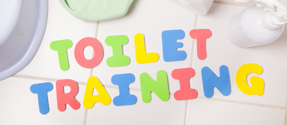 Potty To Toilet Transition