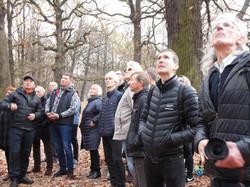 Public event in Kaunas Oak Forest