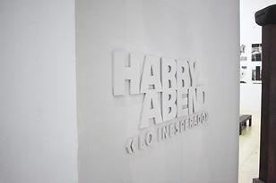 HARRY ABEND. LO INESPERADO HA+LIBRO