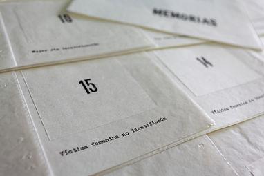 Crónica[s]_Dianora_Pérez_Montilla_1163