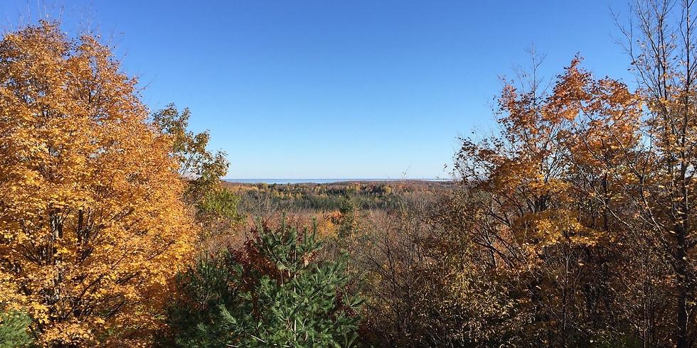 Orillia 3rd Annual Walk/Hike