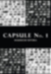 Capsule No 1 cover (web version)-1.jpg