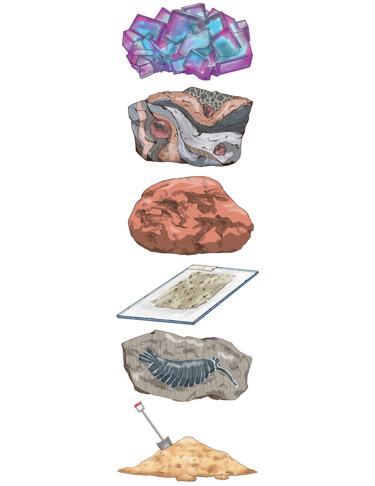 Rocks from each sector of geology.