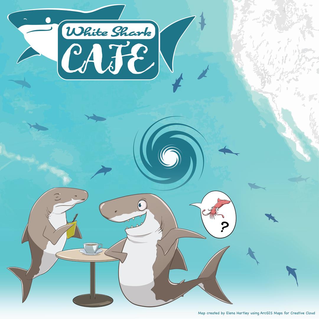White Shark Cafe draft2-01.png