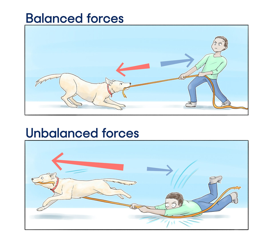 Tug of War Forces