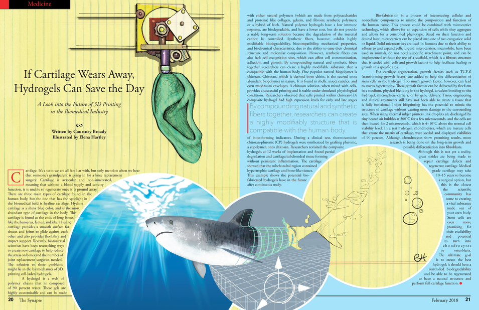 Illustrated and designed article written by Courtney Broady that appeared in The Synapse Magazine.