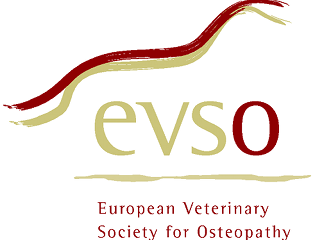 Journée de l'EVSO à Liège
