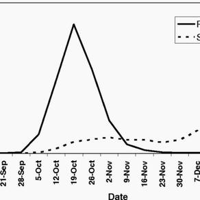 Corona-Epidemie: Die Wichtigkeit früher Massnahmen