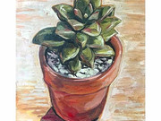Succulent Study