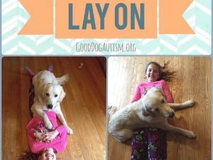 Lay on & Lap