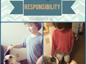 Responsibility and Independence