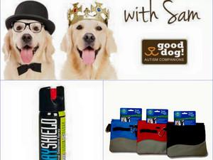 Training Tip Tuesdays -- Stray Dog Safety