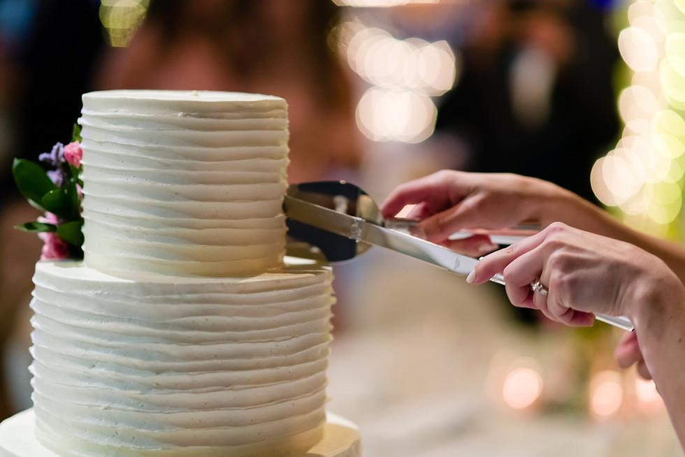 Cloe and Josh Fairytale Wedding in Calgary - Wedding Reception Cake Cutting