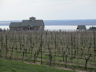 Finger Lakes Winemakers chime in on Terroir Date part 2