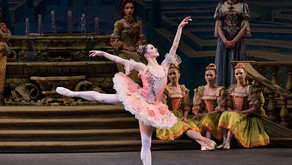 New York City Ballet Dancers Unite with Art Without Borders during COVID-19