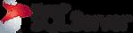 1499794874sql-server-logo-transparent-pn