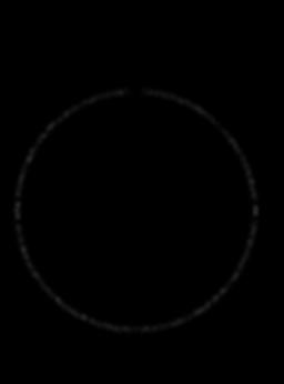 CIRCLE BLACK.png