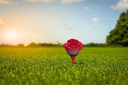 SH_Golf_Event_Photo.jpg