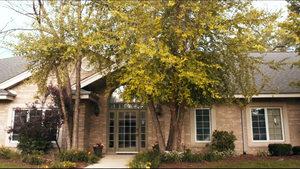 Serenity House - Addison Campus