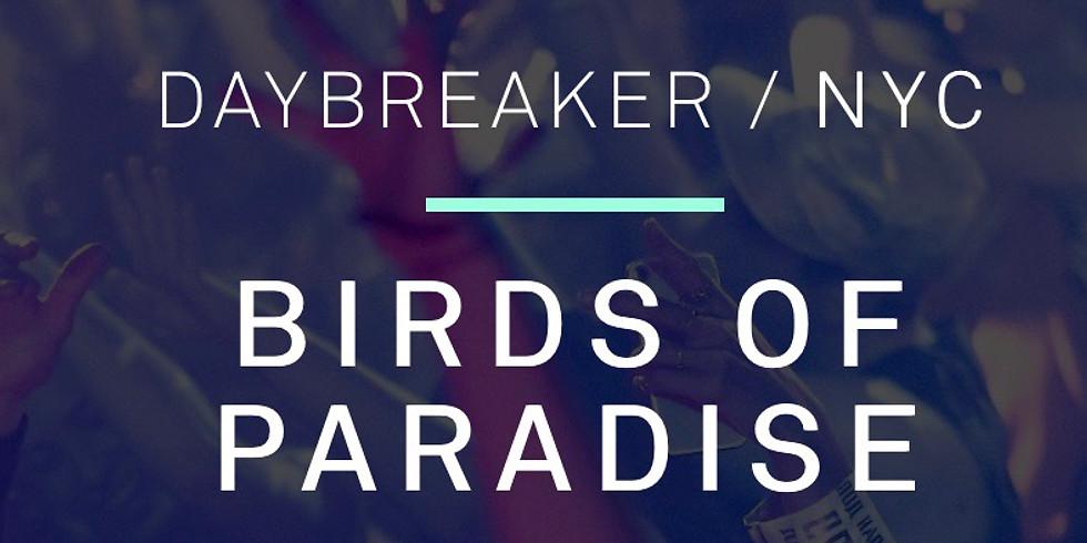 Daybreaker-NYC Birds of Paradise