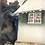 Thumbnail: Detailed watercolor house