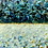 Thumbnail: Spring Sea