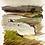 Thumbnail: River painting study