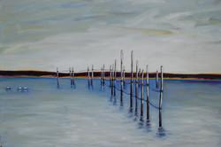 Max's Weir
