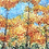 Thumbnail: Golden Fall