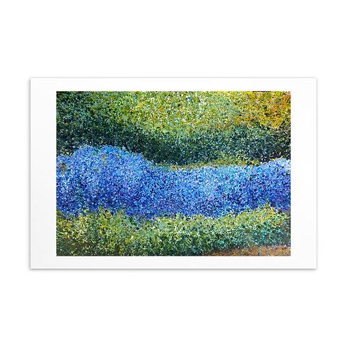 Monet's Garden Postcard