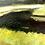 Thumbnail: Mini landscape painting