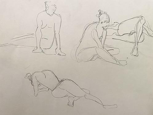 Female Figure Studies