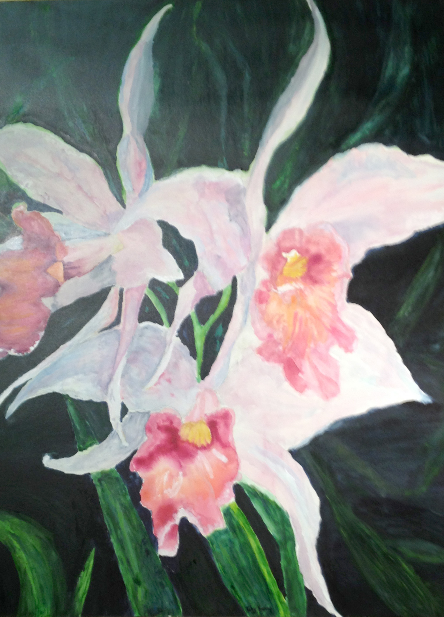 Pink Orchid - Watercolor