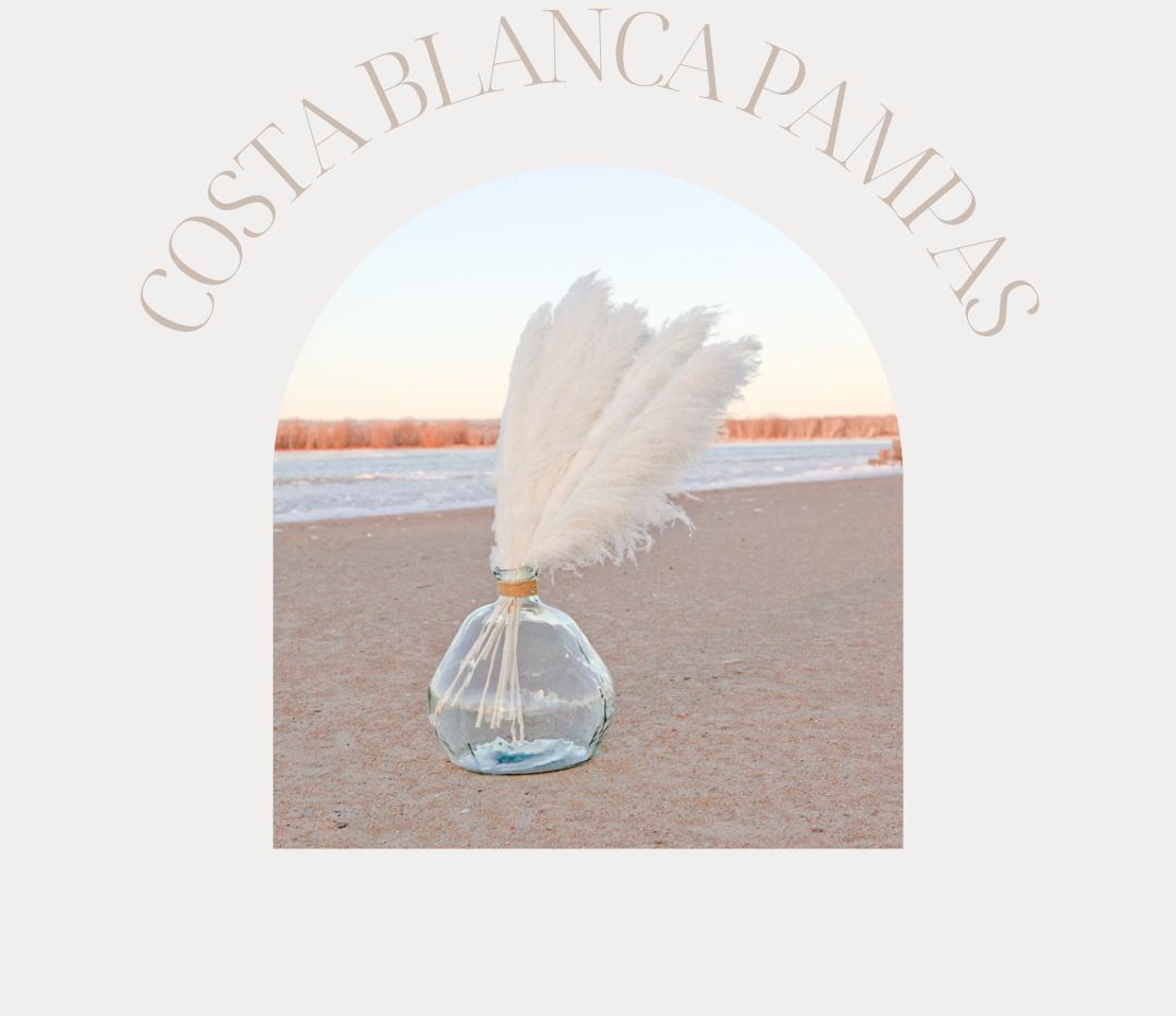 Cost Blanca