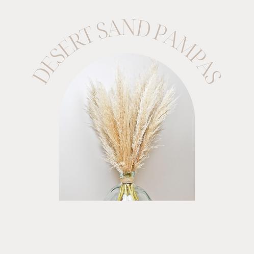 DESERT SAND PAMPAS