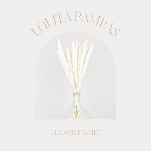 LOLITA PAMPAS WHITE