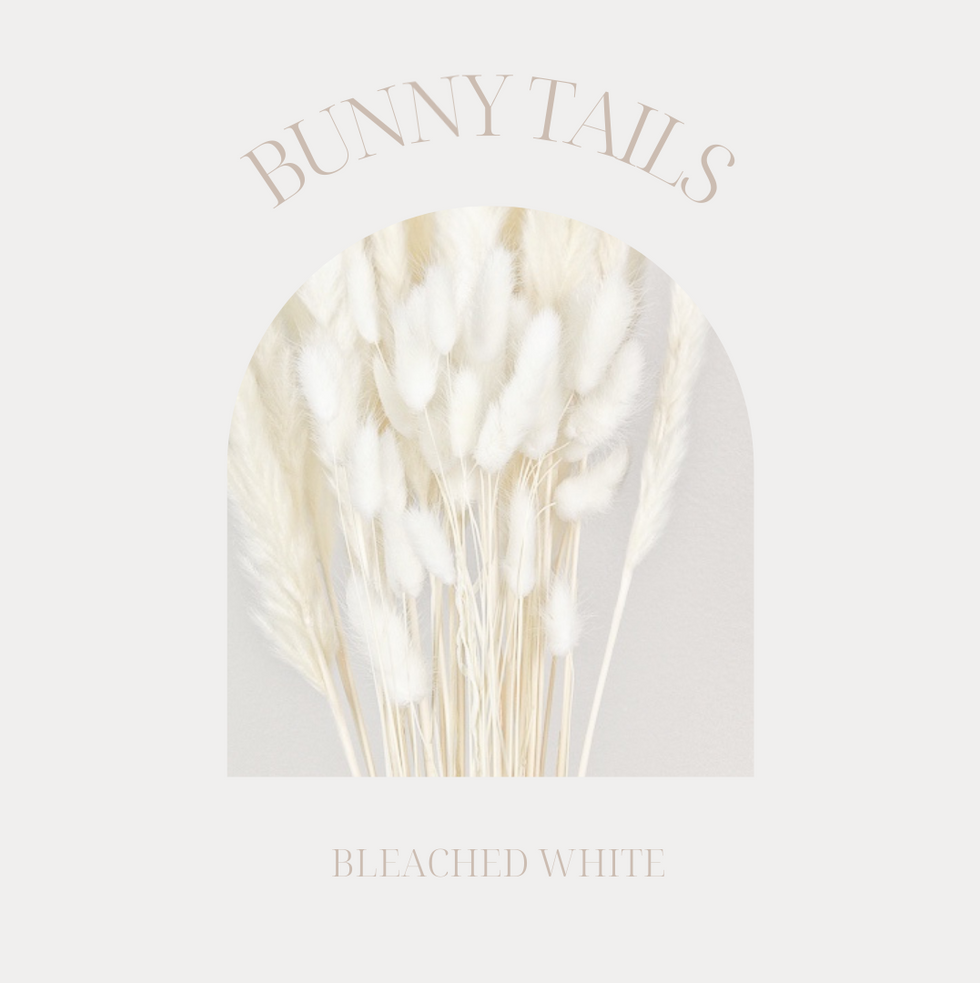 White Bunny Tails