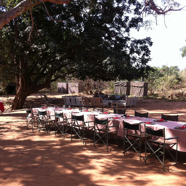 Dinning table in camp under the trees.