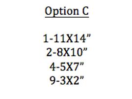 Option C Prints