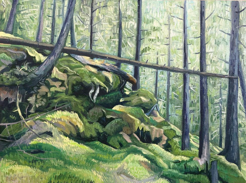Big Landscapes on Little Canvases