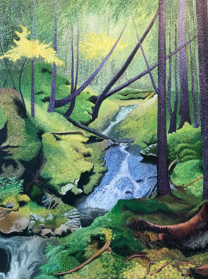 Brothers' Brook (Upstream)