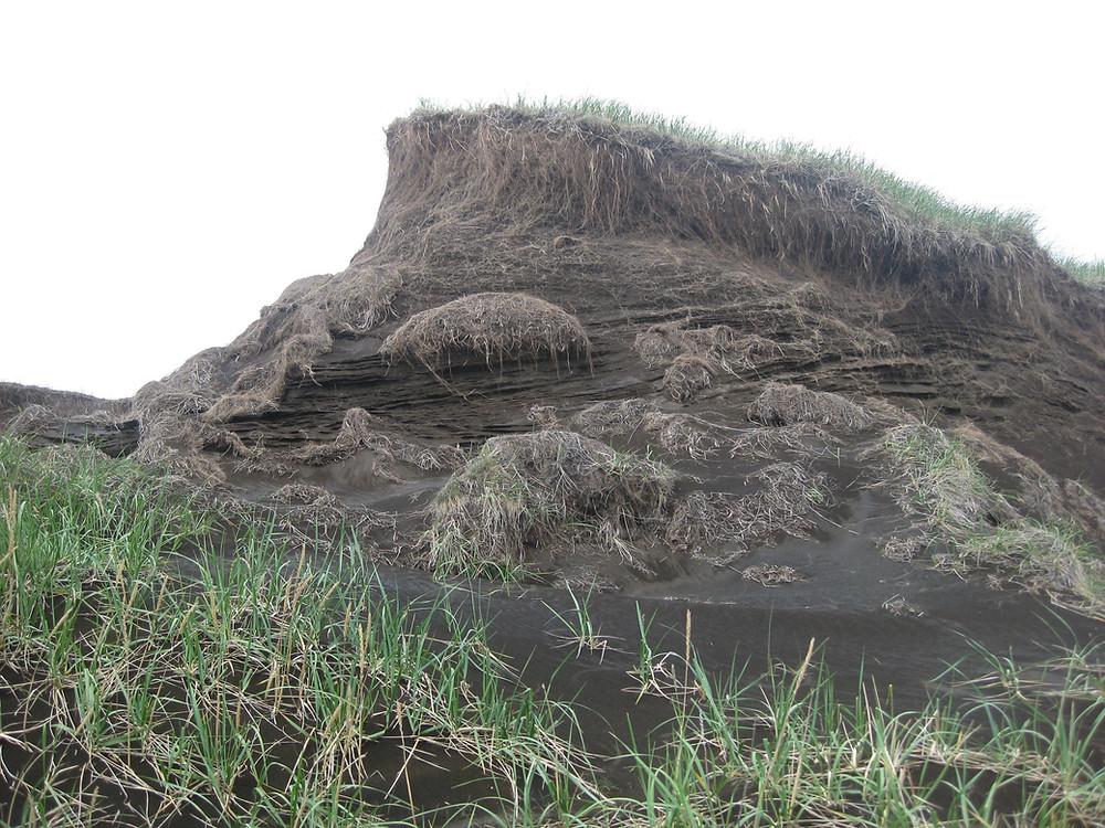 Jarðvegsrof er alvarlegt vandamál á Íslandi.