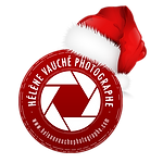 Logo HVP 2016 NOEL.png