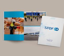 3D STEF-2.jpg