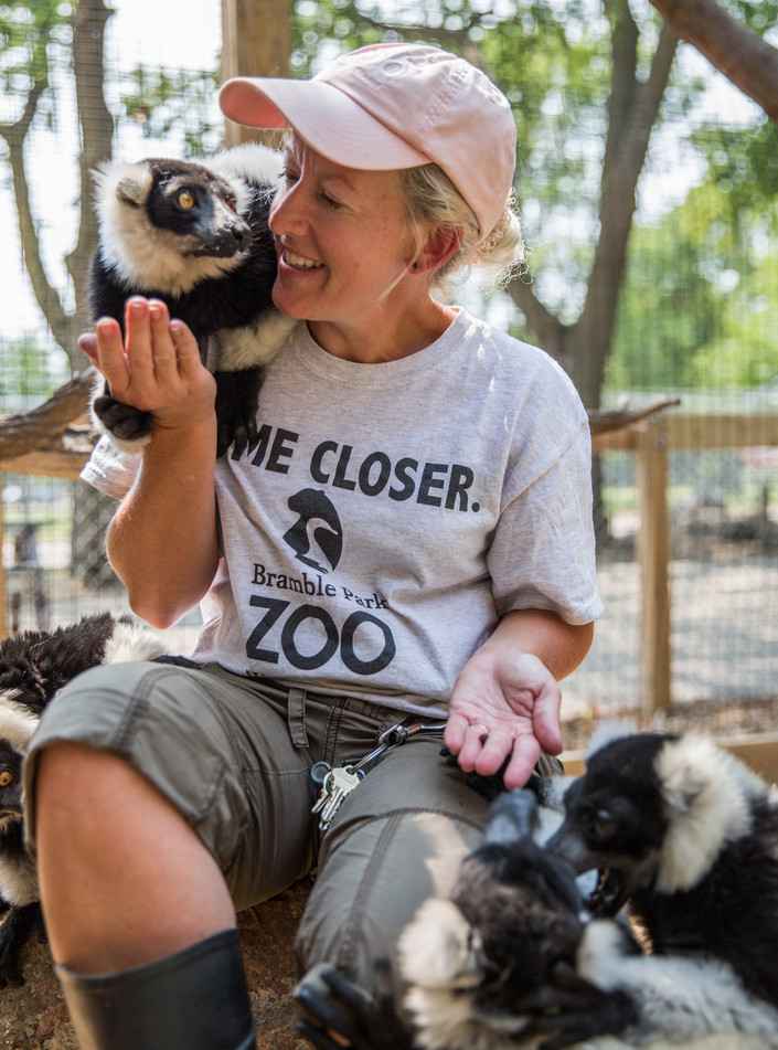 Zookeeper Michelle Miller feeds raisins to a group of black and white ruffed lemurs Wednesday, Aug. 2 at Bramble Park Zoo. Miller said she loves working with lemurs the best because they're more docile than monkeys and, given her way, she would reserve an entire section of the zoo for the 100 or more subspecies of lemurs. ©2017 Grace Ramey