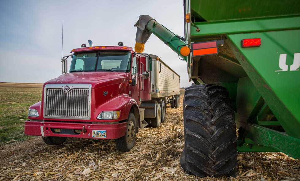 Farmer Dan Thyen unloads his grain cart full of dry corn into one of the five semi trucks transporting the crop to the elevator in LaBolt and to the ethanol plant on Tuesday, Oct. 31. Each truck can carry around 54,000 pounds, give or take ten percent. ©2017 Grace Ramey