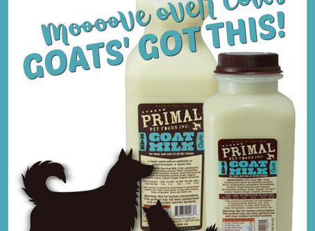 Marvelous Milk - the merits of adding goat milk to your pets' diet