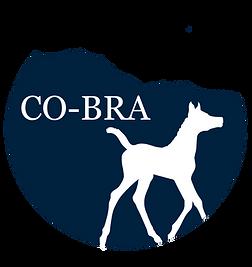 cobra(1).png